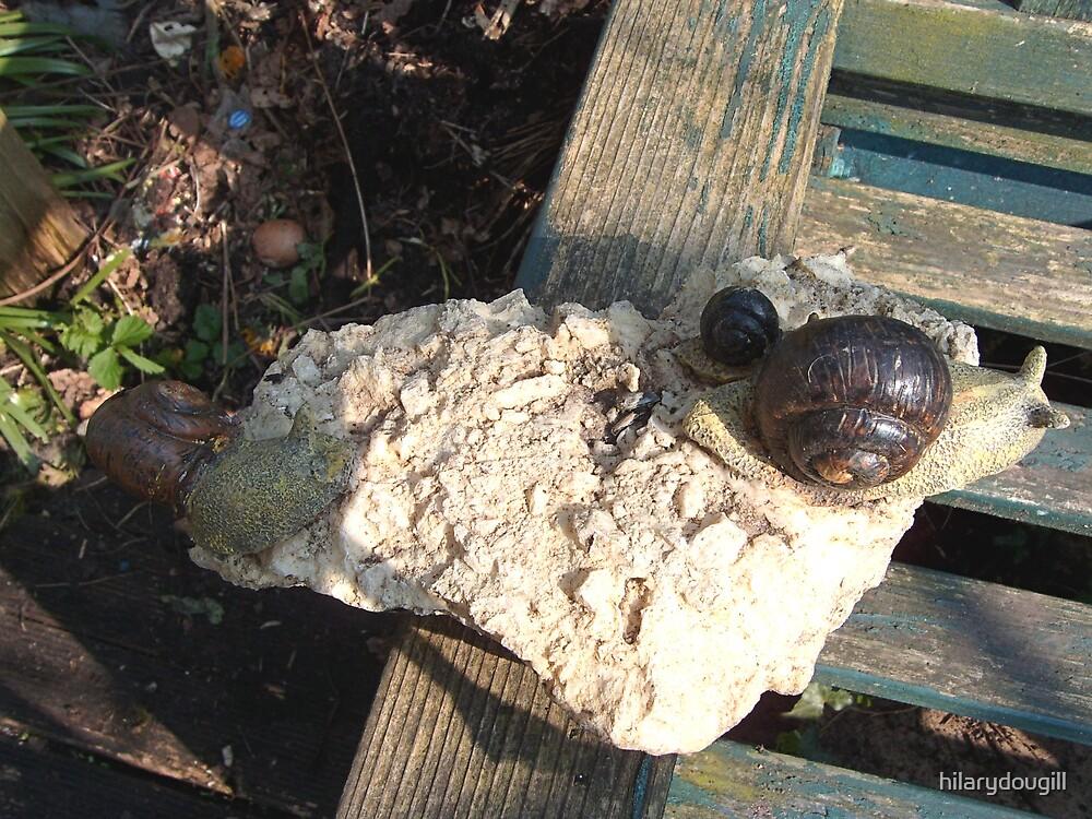 Snails on stone by hilarydougill