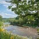 Deerfield River, Charlemont MA by Rebecca Bryson