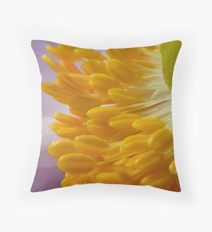Lollypops... Throw Pillow