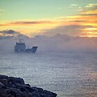 Out of the  Fog by TonyCrehan