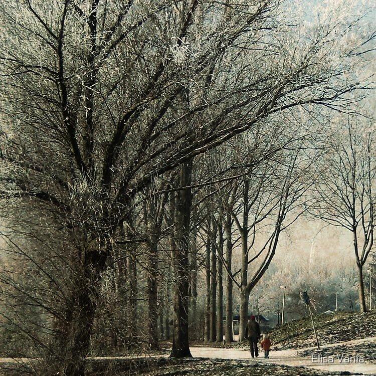 The wood between the worlds by Elisa Vania
