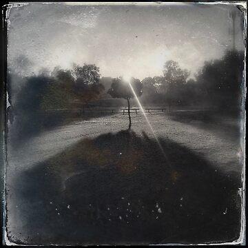 Morning by ADMarshall
