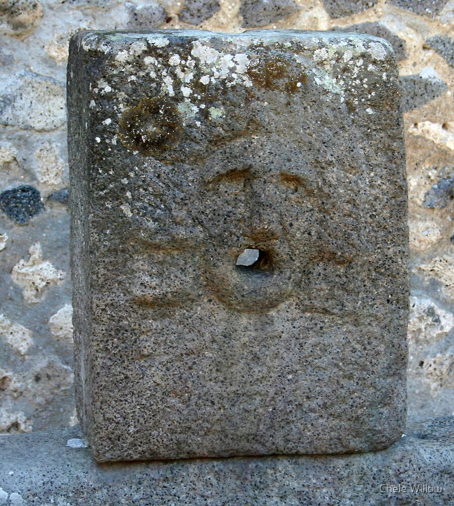 Stone Face by Chele Willow