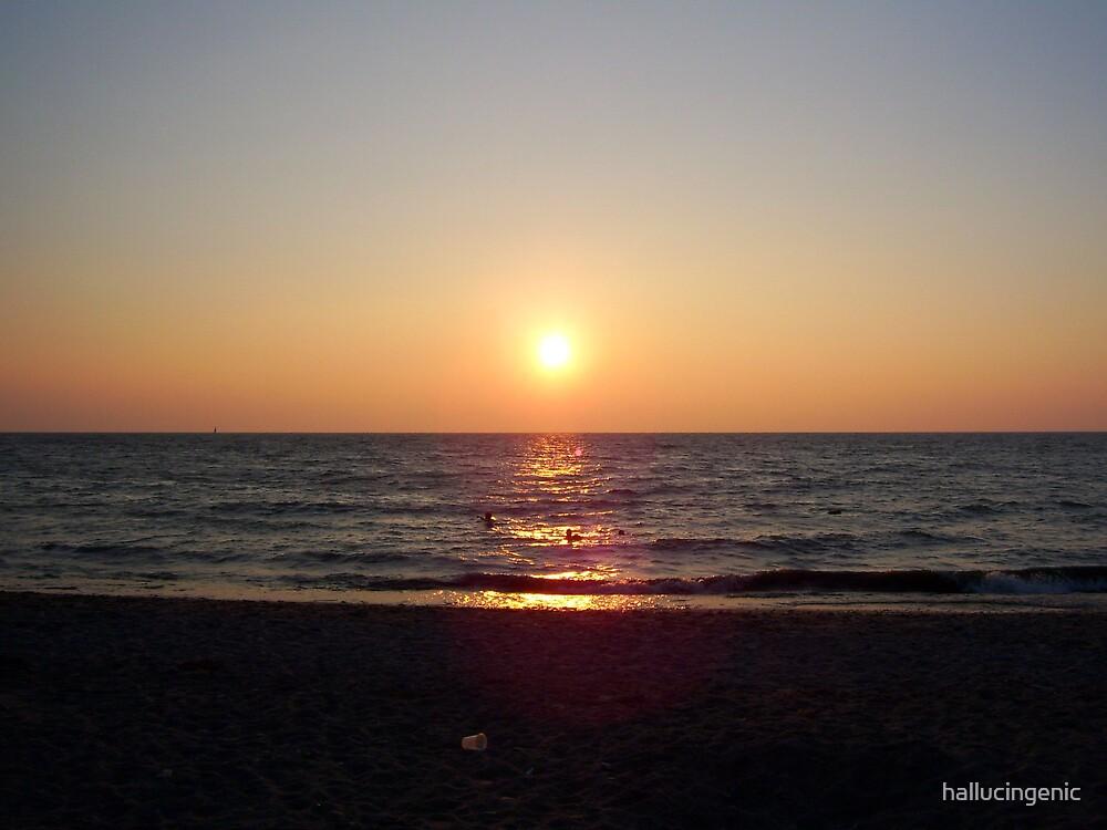 Summer Evening Swim by hallucingenic