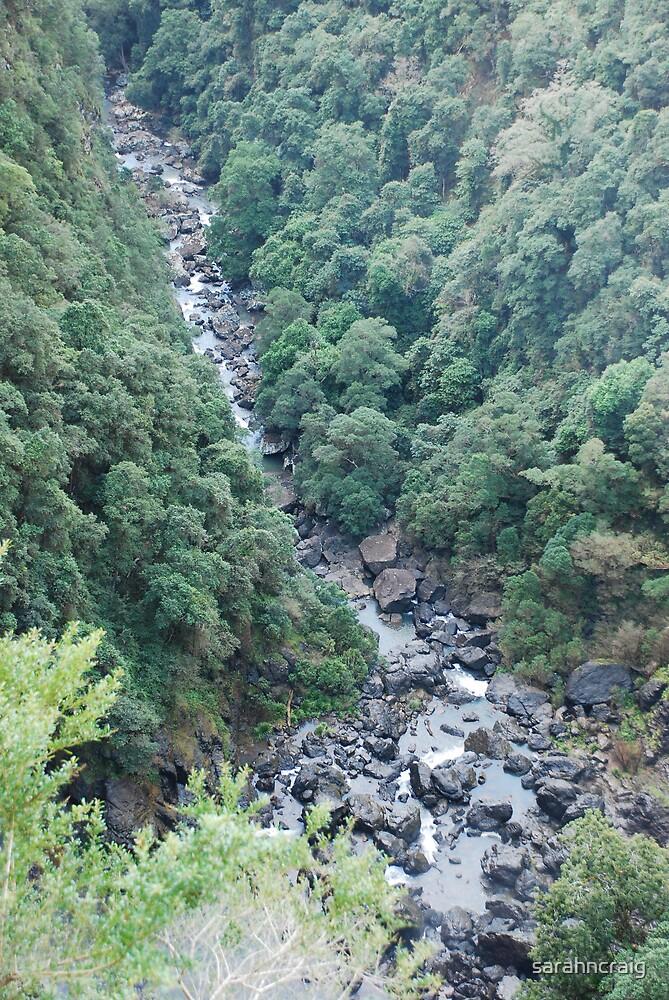 Ellenborough Falls by sarahncraig