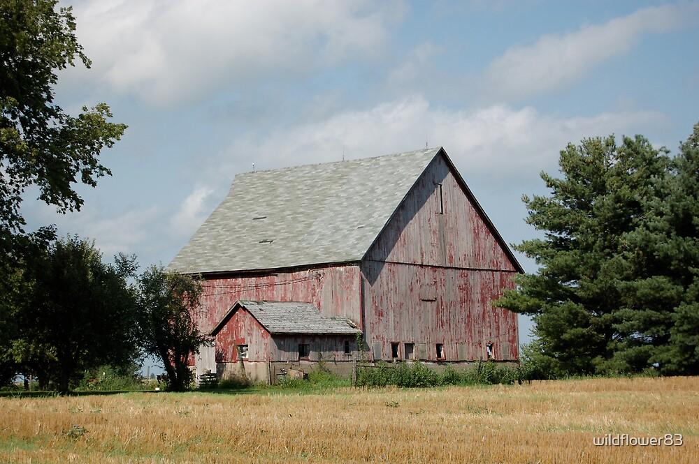 Red barn by wildflower83