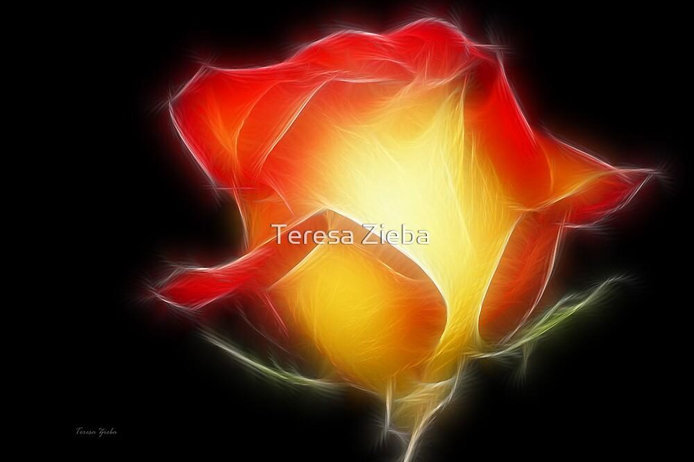 Glow in The Dark by Teresa Zieba