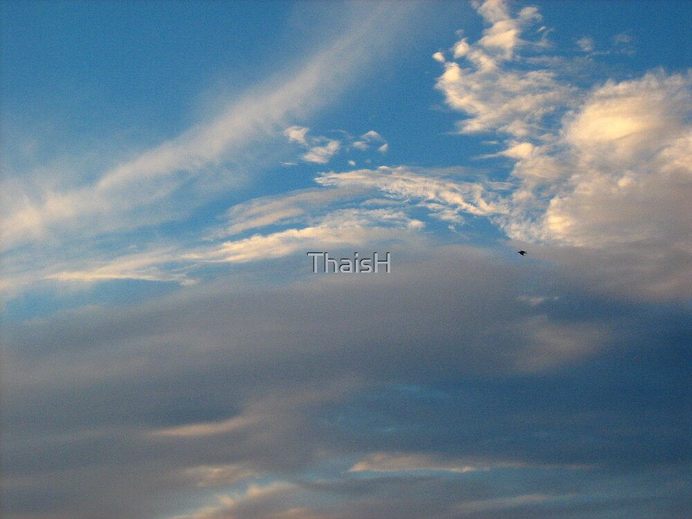Fly Away by ThaisH