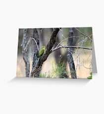 Elegant Parrot Greeting Card