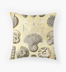 Art Forms in Nature - Amazing HD vintage design number 90 Throw Pillow