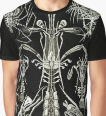 Art Forms in Nature - Amazing HD vintage design number 93 Graphic T-Shirt