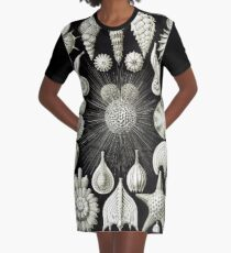Art Forms in Nature - Amazing HD vintage design number 92 Graphic T-Shirt Dress