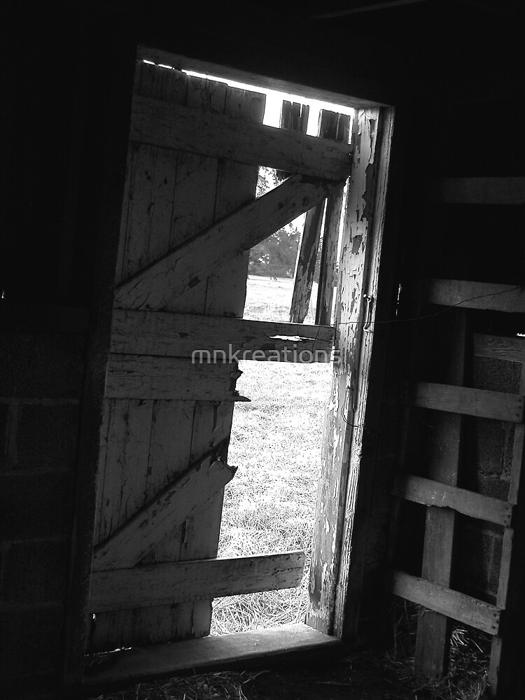 Old Barn Door by mnkreations