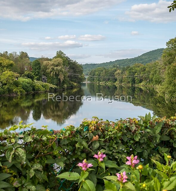 View From The Bridge of Flowers by Rebecca Bryson
