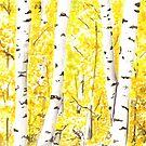 Yellow Aspen Tree Art, Birch Trees in the Forest, Birds and Berry Studio by birdsandberry