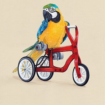 Parrot Macaw bike red by Ruta
