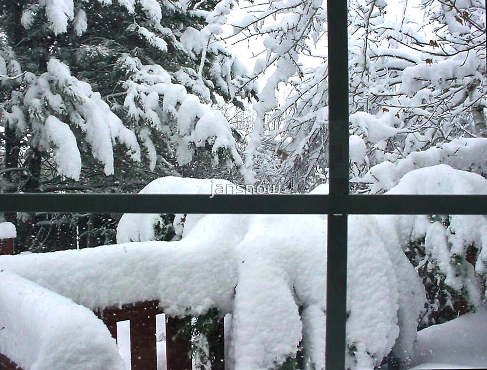 Winter Wonderland © by jansnow