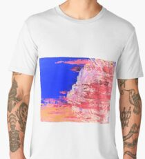 Into the Mist Pantone Color of the Year 2016 Abstract Men's Premium T-Shirt