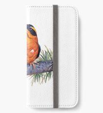 Birds In Hell iPhone Wallet/Case/Skin