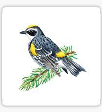 Yellow-rumped Warbler Sticker