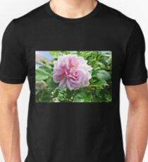 Pink Rose Photo T-Shirt