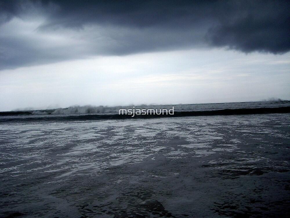Storm on the Horizon by Pamela Jasmund