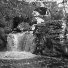 Doane's Falls in Black and White by Rebecca Bryson