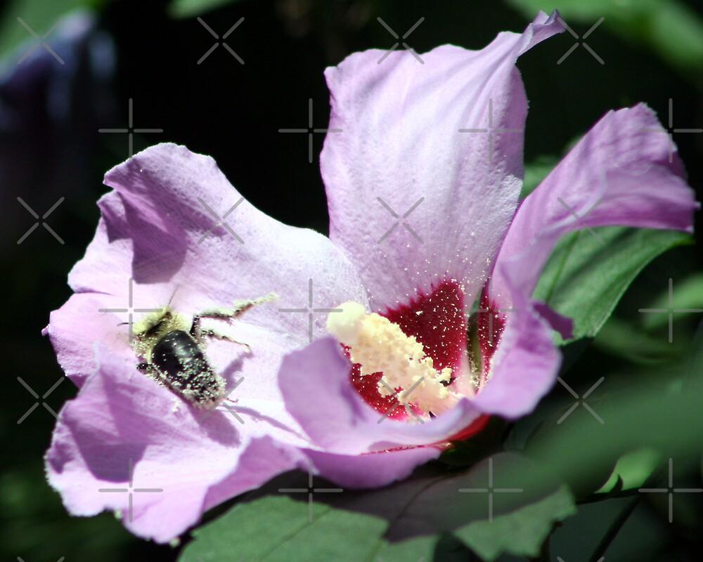 Pollen Drunk by mikrin