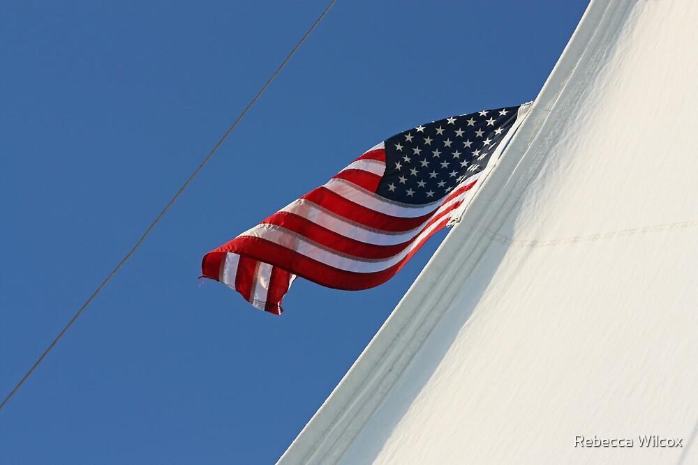 High Sailer by Rebecca Brann
