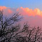 Pink Sky by terezadelpilar ~ art & architecture