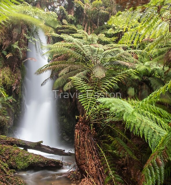 Franks Falls by Travis Easton