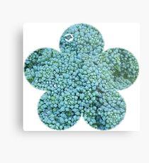 Green Broccoli Florets Metal Print