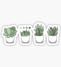 Pegatina Tiny Potted Succulents and Gradient