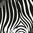 Zebra Stripes   Zebra Print   Animal Print   Black and White   Stripe Patterns   Striped Patterns   by EclecticAtHeART
