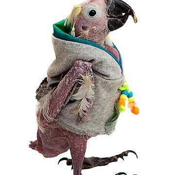 Naked Bird by RusticShiraz