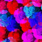 punk rose by mindgoop