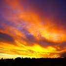 Febuary sunset by Penny Kittel
