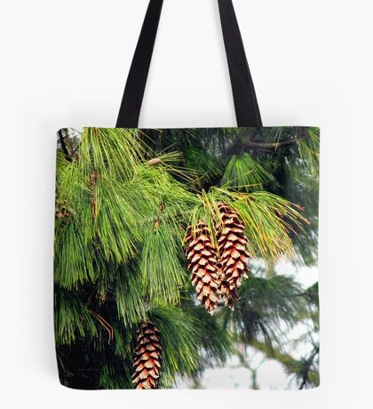 On The Threshold of Winter - Sunlit Pine Cones  Tote Bag