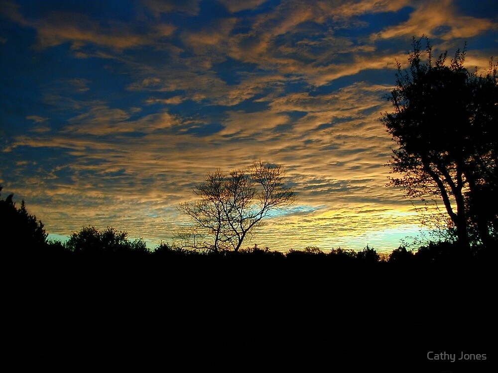 Sunset at Home by Cathy Jones