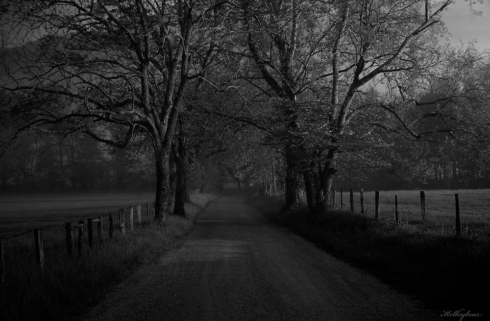 Country Road  by kelleybear