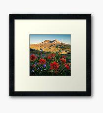 Sunset Paintbrushes at Mount St. Helens Framed Print