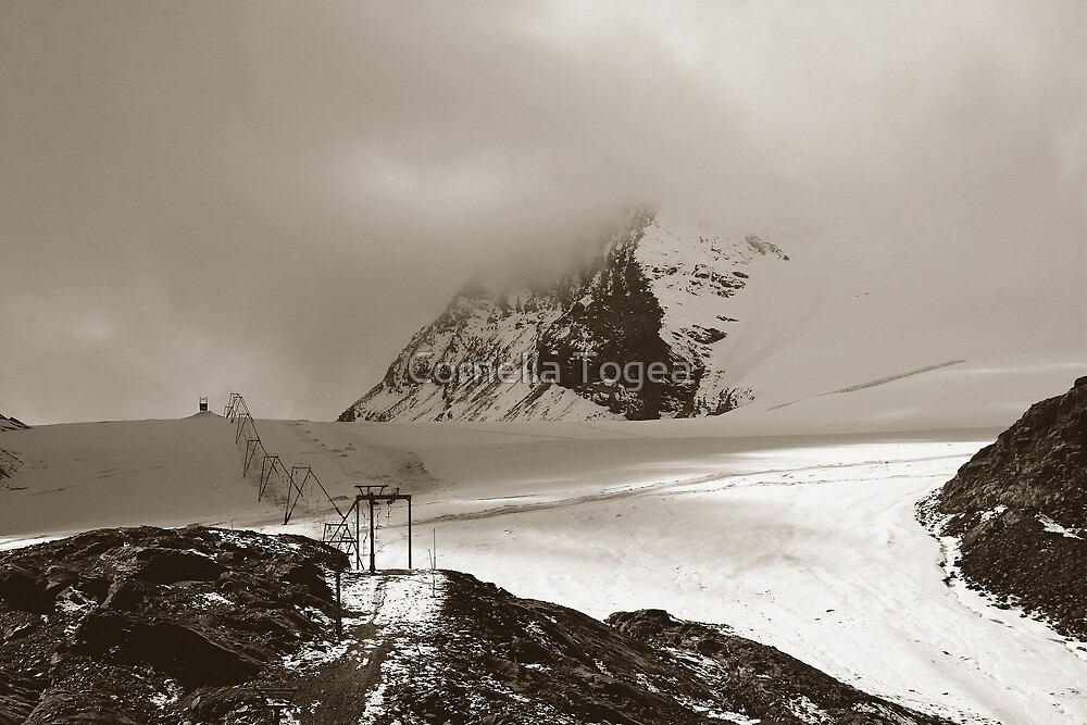 mist gray landscape by Cornelia Togea