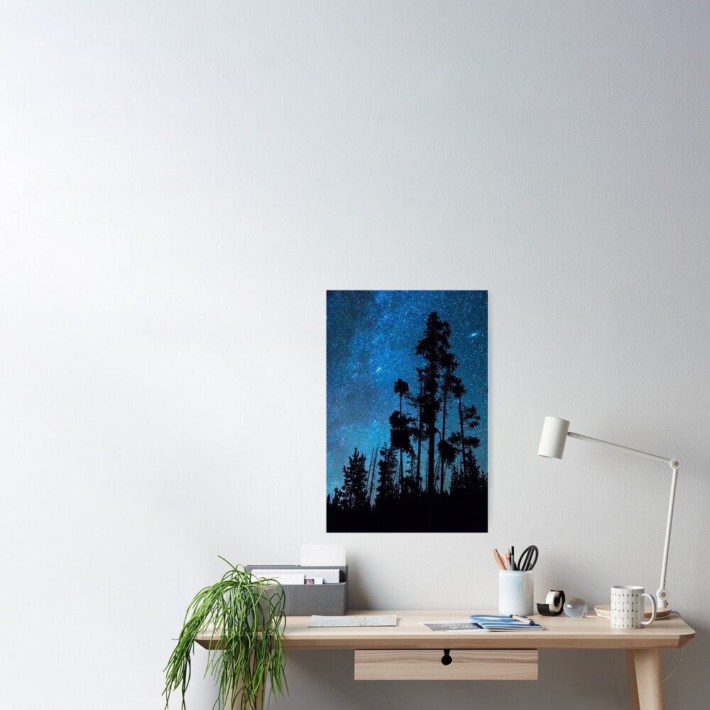 Pinnacle Of The Forest  Poster