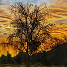 Sunset in Perris by Rhonda Strickland