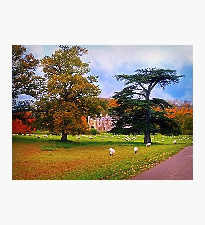 Autumnal View of Dumbleton Hall  Photographic Print