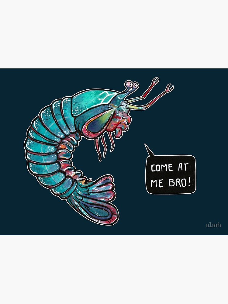 Come At Me Bro! | Poster