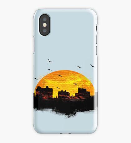 Cool Sunset - City Skyline - Cute Birds iPhone Case/Skin