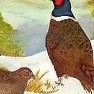 Brace of Pheasants by sharpie
