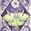 « Luna Moth » par BonnieRoseBryan