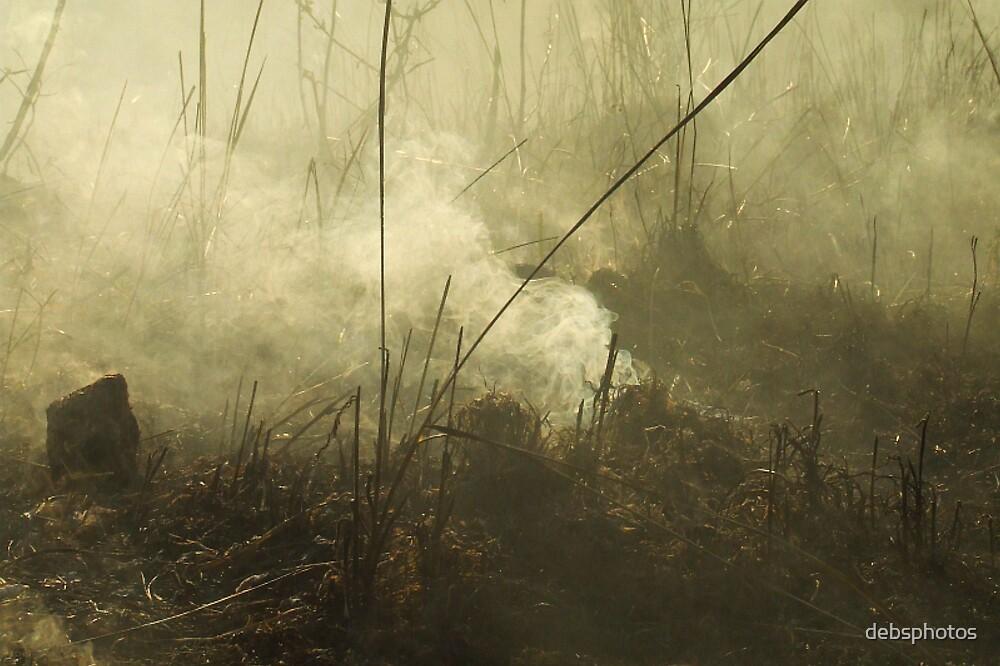 """Smouldering"" by debsphotos"